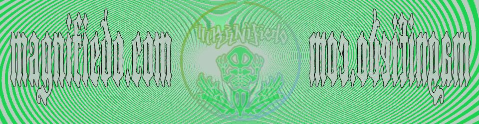 magnifiedo.com